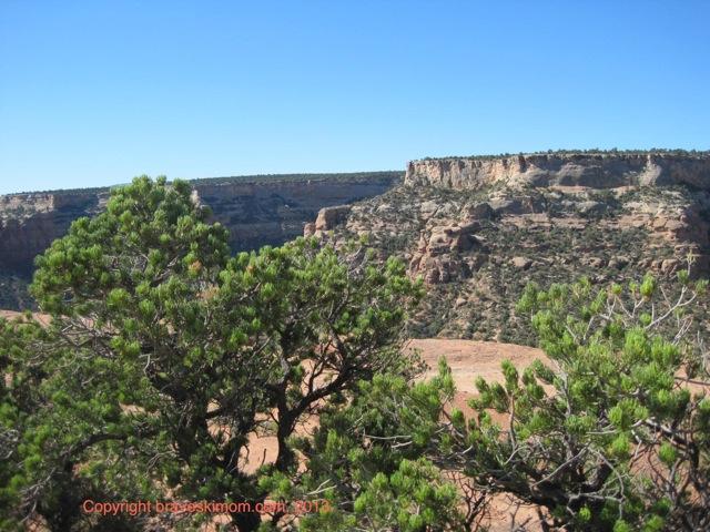 colorado national monument vista