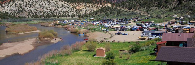 Campout for the Cause 2014