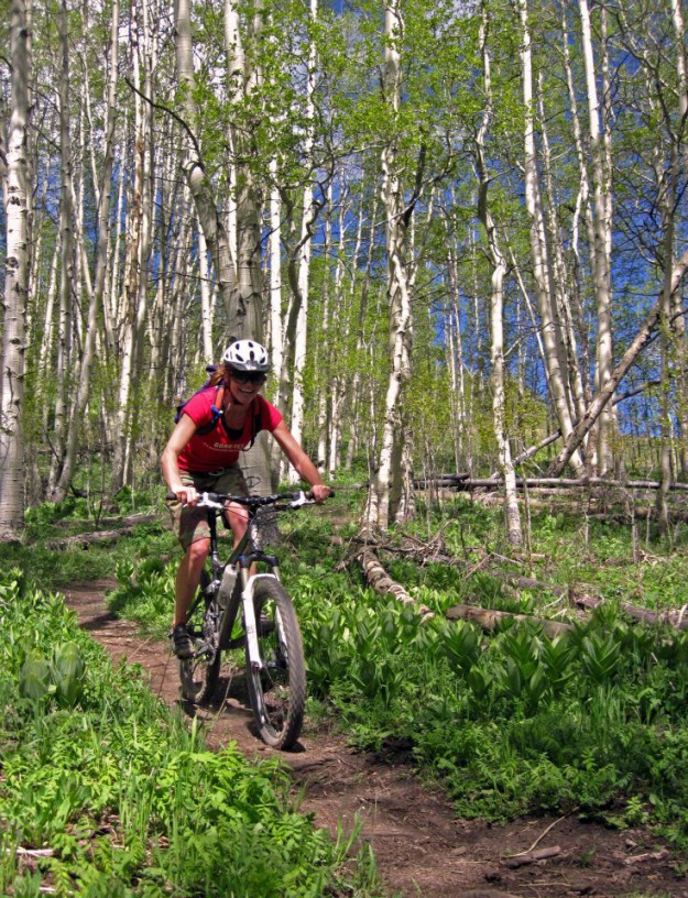Crested Butte mtn guides