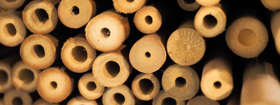 GEAR – Bamboo